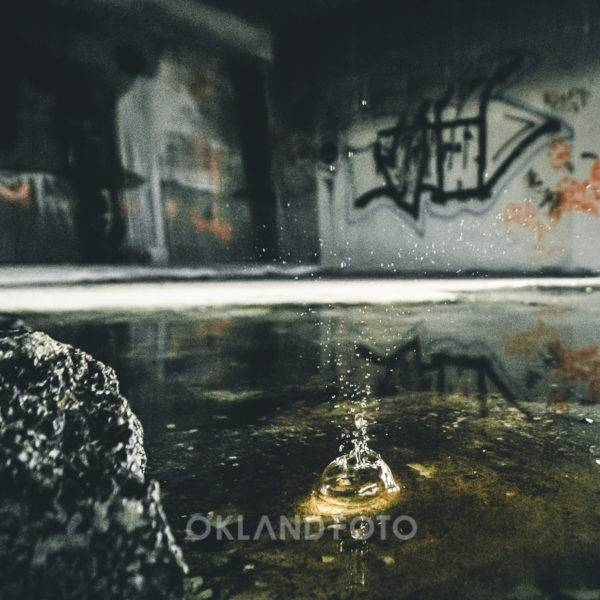 Økland foto-107