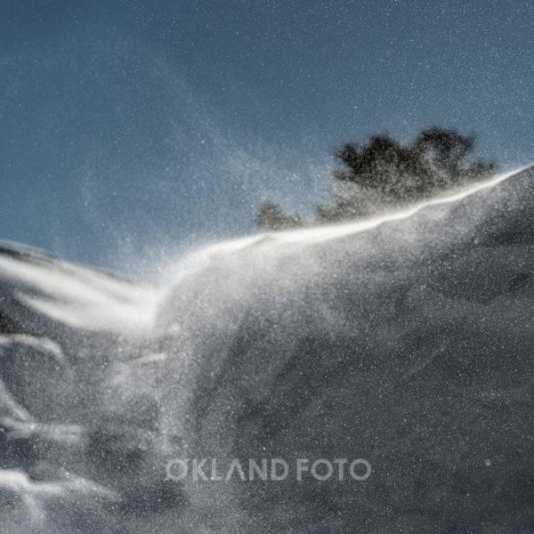 Økland foto-137